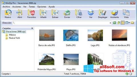 Ekrānuzņēmums WinZip Windows 8
