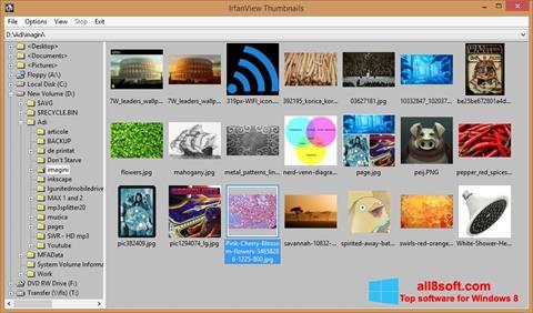 Ekrānuzņēmums IrfanView Windows 8