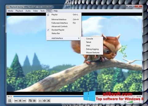Ekrānuzņēmums VLC Media Player Windows 8